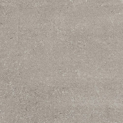 Marstood | Stone 02 | Serena | 60x120 matt | Carrelage céramique | TERRATINTA GROUP