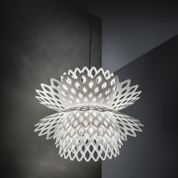 Desert Rose | Suspended lights | Slamp