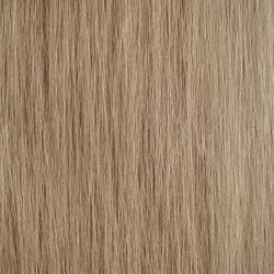 Matt Texture RM 606 51 | Wandbeläge / Tapeten | Elitis