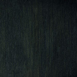 Matt Texture RM 606 62 | Wall coverings / wallpapers | Elitis