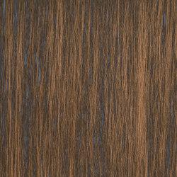 Matt Texture RM 606 77 | Carta da parati / carta da parati | Elitis