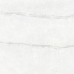 ABCG | Big Croco HPC CV 105 22 | Revestimientos de paredes / papeles pintados | Elitis