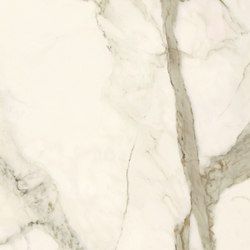 Laminam I Naturali Calacatta Venato Polished | Ceramic tiles | Crossville