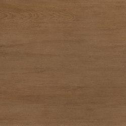 Laminam Linfa Corteccia   Floor tiles   Crossville