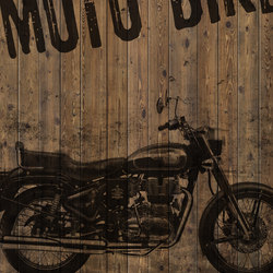 Indewo® Graphic | Bike | Wood panels | europlac