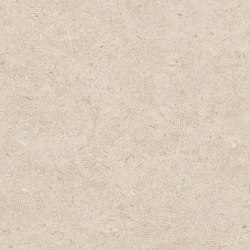 Bera&Beren Wall Biscuit | Ceramic tiles | LIVING CERAMICS