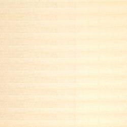 Birkoplex® | Betulla tranciato | Pannelli legno | europlac