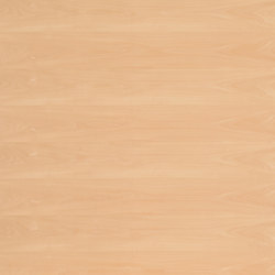 Birkoplex® | Beech steamed | Wood panels | europlac