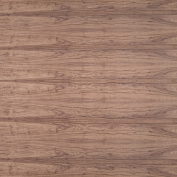 Birkoplex® | Walnut american | Wood panels | europlac