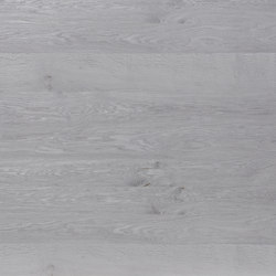 Rustica®Basis | Beam Oak Color silver | Wood panels | europlac