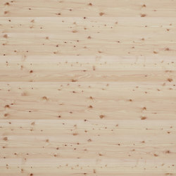 Rustica®Basis  | Knotty Larch | Planchas | europlac