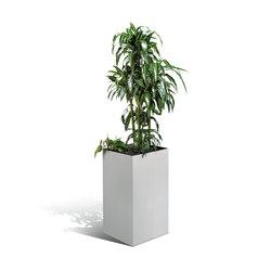 ClimateOffice Akustik Pflanzenkubus | Pots de fleurs | C+P Möbelsysteme