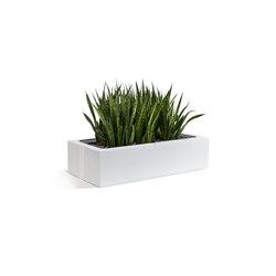 Climate Office Akustik Sideboard-Aufsatz ClimateOffice | Pots de fleurs | C+P Möbelsysteme