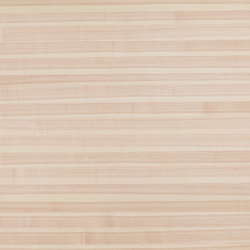 Rustica®Basis | Core Ash | Wood panels | europlac