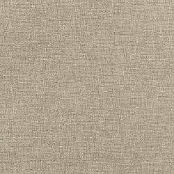 Ampara Fabrics | Kalutara - Driftwood | Tejidos para cortinas | Designers Guild