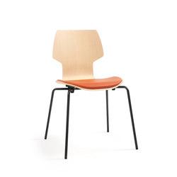 Gràcia | chair oak black | Sedie | Mobles 114