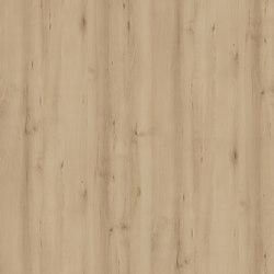 Scandic Beech Lights | Pannelli legno | Pfleiderer