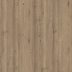 Scandic Beech Dark | Wood panels | Pfleiderer