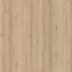 Iconic Beech | Planchas de madera | Pfleiderer