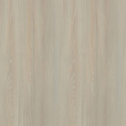 Lindstrom Beech Light | Wood panels | Pfleiderer
