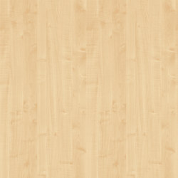 Royal Maple | Planchas de madera | Pfleiderer