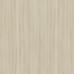 Kiruna Maple | Wood panels | Pfleiderer