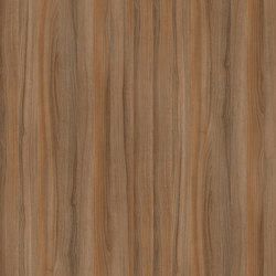 Persian Walnut | Wood panels | Pfleiderer