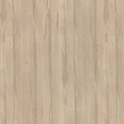 Ojcow Birch | Panneaux | Pfleiderer