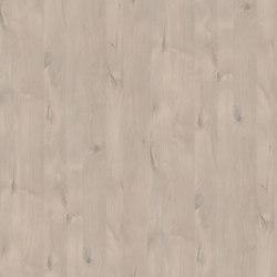 Panama Alder | Planchas de madera | Pfleiderer