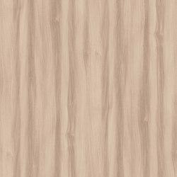 Baron Elm | Wood panels | Pfleiderer