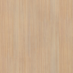 Light Elm | Wood panels | Pfleiderer