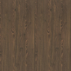 Stained Linden | Wood panels | Pfleiderer