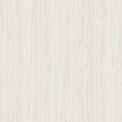 Hemlock Spruce White | Planchas de madera | Pfleiderer