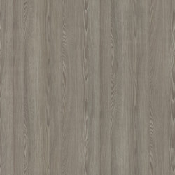 Jacobsen Pine Beige Grey | Wood panels | Pfleiderer