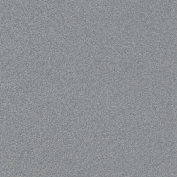 Granite® Silky Mat | Rough Anthracite | Bleche | ArcelorMittal