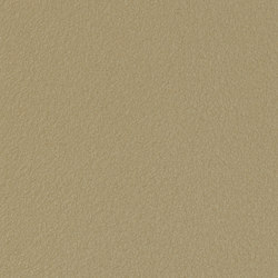 Granite® Silky Mat | Rough Brass | Sheets | ArcelorMittal
