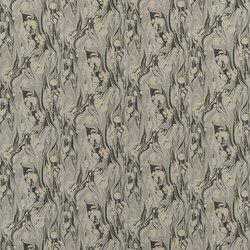 Jardin Des Plantes Fabrics   Delahaye - Slate   Curtain fabrics   Designers Guild