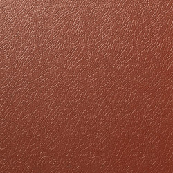 Solano® Nature | Copper beech | Tôles | ArcelorMittal