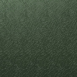 Solano® Nature | Juniper green | Sheets | ArcelorMittal