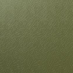 Solano® Nature | Olive green | Sheets | ArcelorMittal