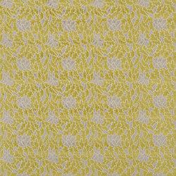 Torca Fabrics | Luisa - Pear | Vorhangstoffe | Designers Guild