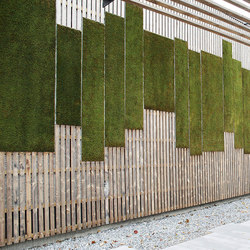 Outdoor Moss Wall | Fachadas verdes | Greenworks