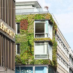 Outdoor Plant Walls | Living / Green walls | Greenworks