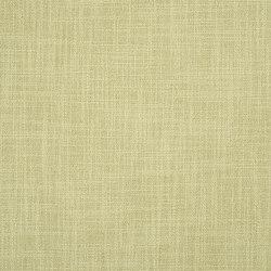 Trevellas Fabrics | Carlyon - Pistachio | Curtain fabrics | Designers Guild