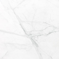 Laminam I Naturali Bianco Statuario Polished | Floor tiles | Crossville