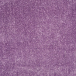 Pavia Fabrics | Pavia - Viola | Curtain fabrics | Designers Guild