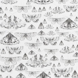 Jardin Des Plantes Wallpaper | Issoria - Black And White | Wall coverings / wallpapers | Designers Guild