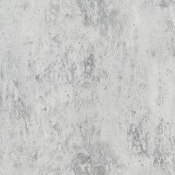 Jardin Des Plantes Wallpaper | Michaux - Zinc | Wall coverings / wallpapers | Designers Guild