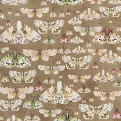 Jardin Des Plantes Wallpaper | Issoria - Gold | Wall coverings / wallpapers | Designers Guild
