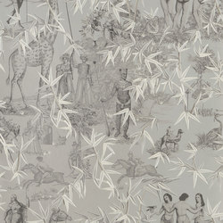 Au Thèâtre Ce Soir Wallpaper | Exotisme – Argent | Wall coverings / wallpapers | Designers Guild